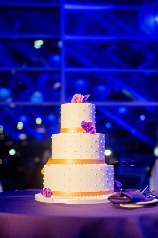 rebecca-eric-adler-planetarium-chicago-wedding-durpetti-55